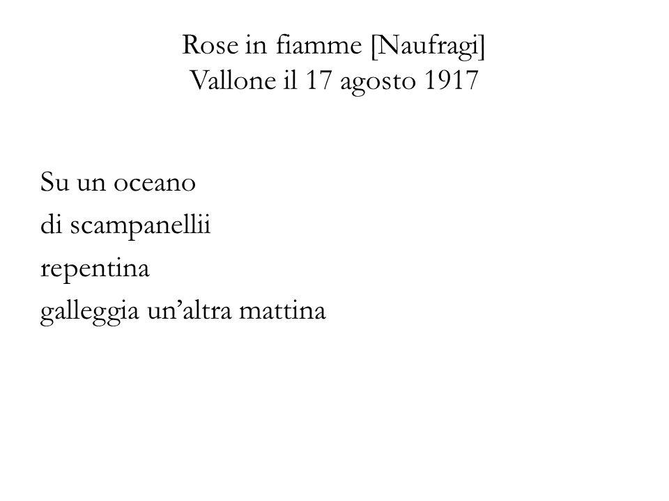Rose in fiamme [Naufragi] Vallone il 17 agosto 1917